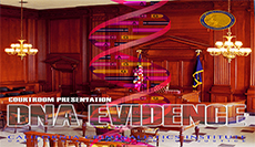 Courtroom Presentation of DNA Evidence