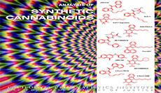 Analysis of Synthetic Cannabinoids